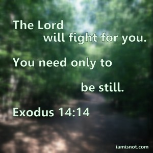 The Lord will fight for you. You need only to be still.  Exodus 14:14
